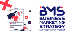 Business Executive Strategy Program